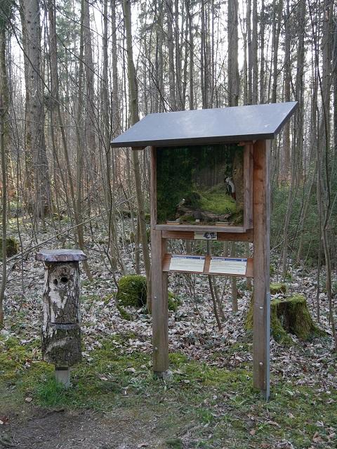 Schaukasten mit Spechthöhle am Vogellehrpfad Friesenried