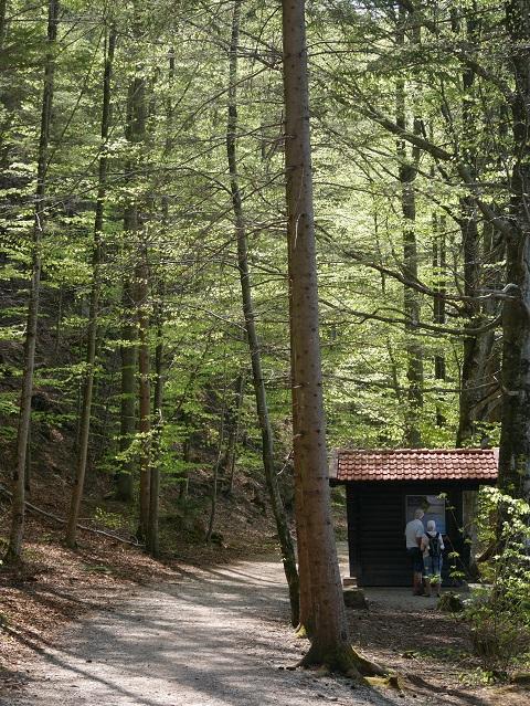 Schutzhütte am Weißensee