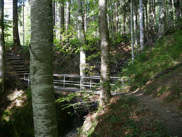 Wanderweg bei Ratholz im Tal der Konstanzer Ach