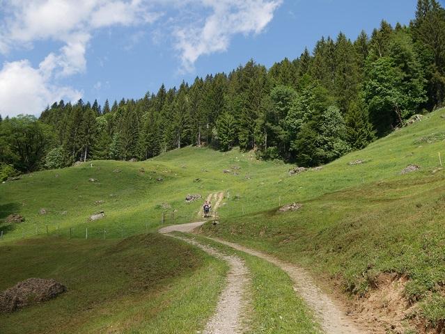 Wanderweg zum Gierenkopf