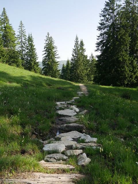 auf dem Weg von der Burgl-Hütte nach Balderschwang