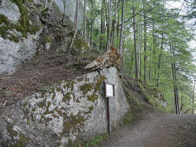 ehemaliger Steinbruch am Weißensee-Südufer