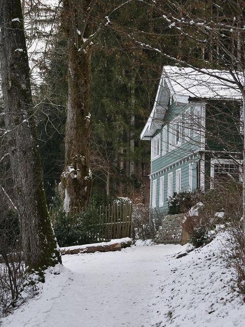 grünes Haus am Niso