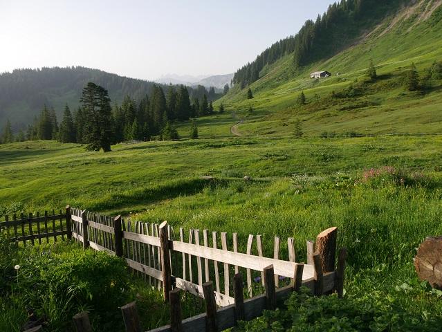 morgendlicher Ausblick von der Burgl-Hütte