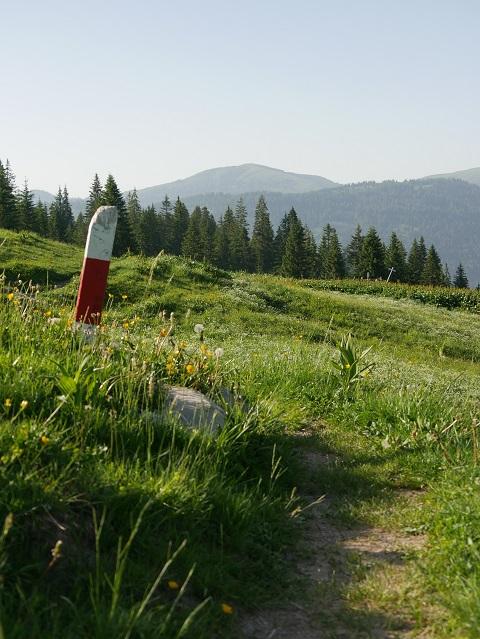 weiß-roter Markierungspfosten in Berglandschaft