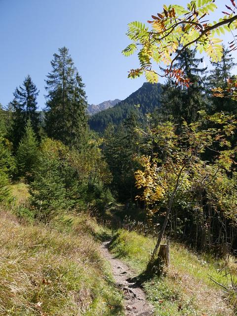 Wanderweg zwischen dem Wildfräuleinstein und Willersalpe