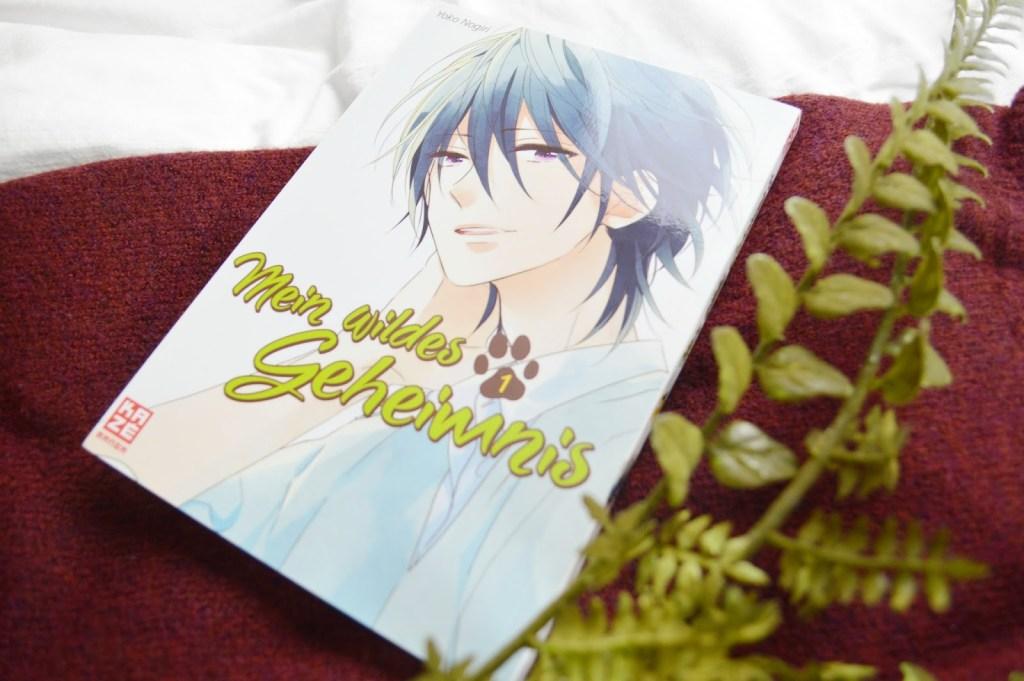 Kurze Rezension | Mein wildes Geheimnis von Nogiri | Manga