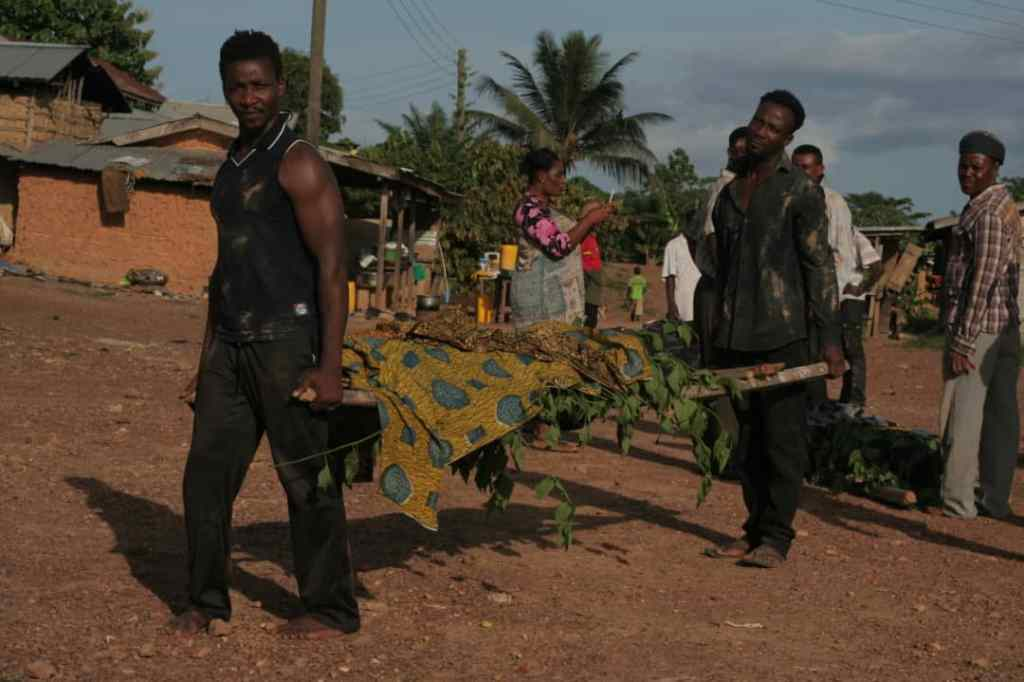 VIDEO: ROMEO FILMS LIMITED EXPOSES THE HORROR AND CORRUPTION IN THE COCOA INDUSTRY