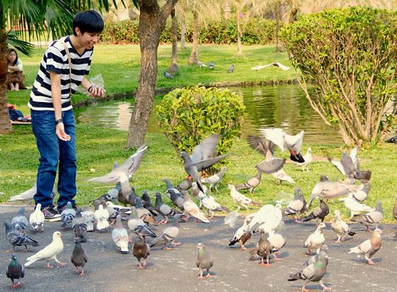 Chiang Mai City Park Birds