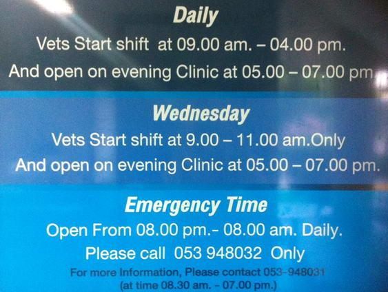 Chiang Mai Veterinarian Hours