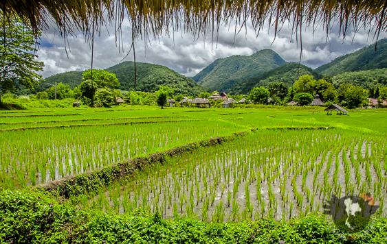 Requirements for Thai tourist visas