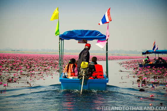 Boat on the Red Lotus Sea in Udon Thani, Thiland