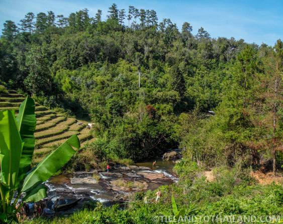 River bathing at the Elephant Jungle Sanctuary