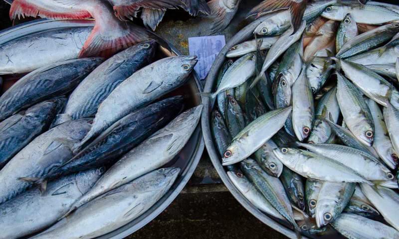 Ban Klong Luek Border Market | Sa Kaeo Thailand