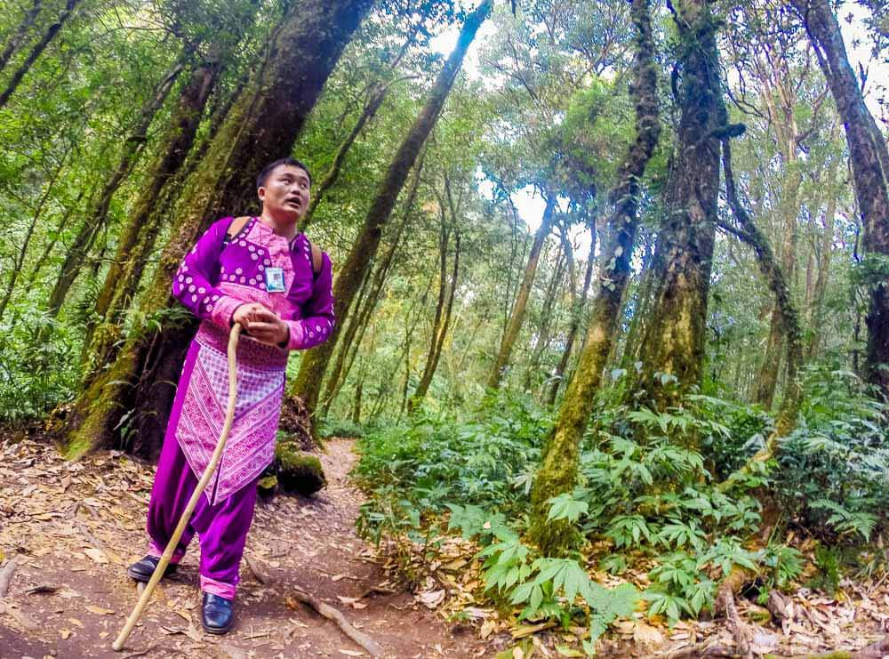 Giew Mae Pan trail guide