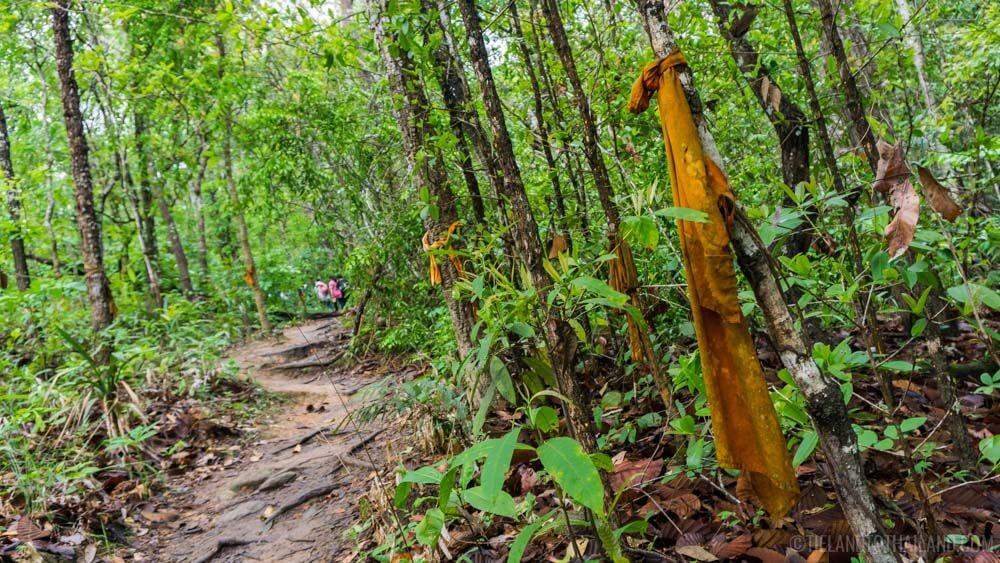 Hiking the monk's trail up Doi Suthep