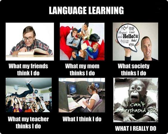 Language Learning Meme