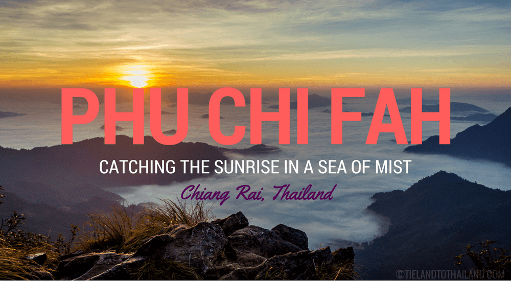 Phu Chi Fah: Catching the Sunrise in a Sea of Mist