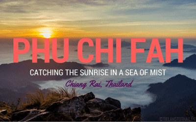 Phu Chi Fah: Catching the Sunrise in a Sea of Mist
