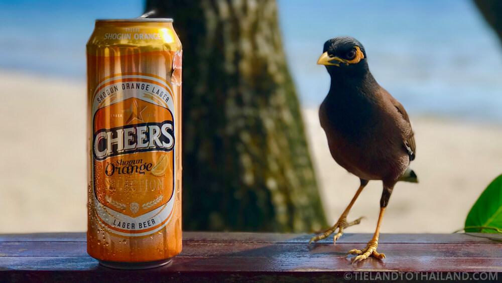 Orange Cheers Beer in Thailand