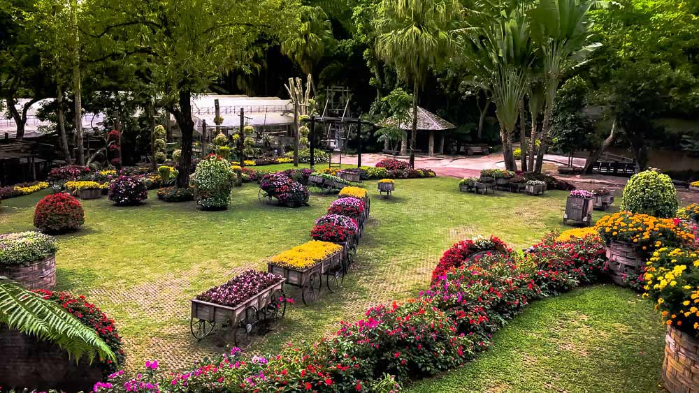 Flower beds at Mae Fah Luang Garden