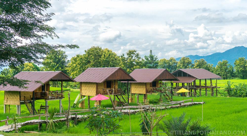 Bantailue Cafe Homestay (โฮมสเตย์กาแฟบ้านไทลื้อ) in Nan, Thailand