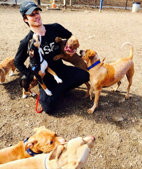 Ian Somerhalder, un guapo actor que defiende a los animales