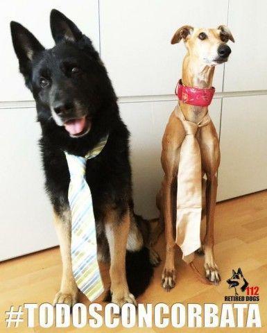 todos-con-corbata