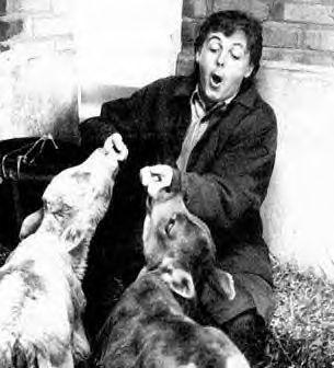 Paul McCartney es un activista en los derechos de los animales