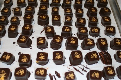 Sesame gianduja, on a base of dark chocolate mixed with sesame croquant, with pandas on top!