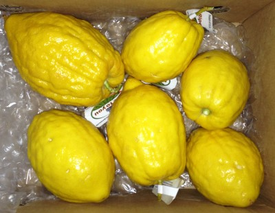 box of citrons!