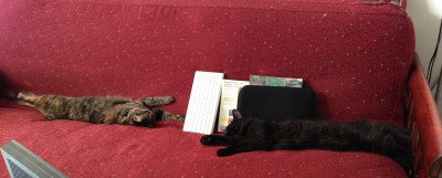 Fritz and Tigress, stretched out on the couch