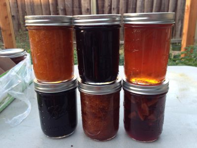 Six kinds of jam and marmalade!