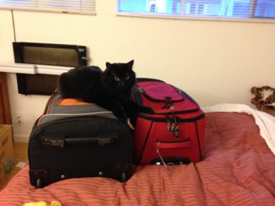 Fritz laying claim to the luggage