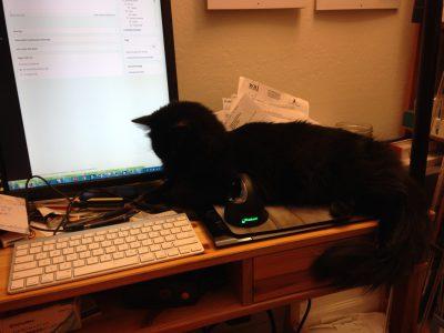 """Fritz """"helping"""" me write"""