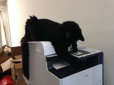 Fritz, lord of the printer