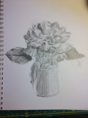 3rd rose sketch