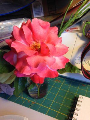 3rd rose sketch - original flower