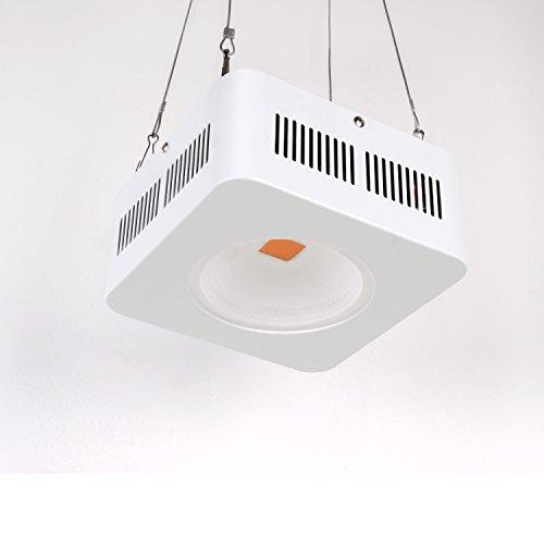 Full Lampara Led Spectrum Light Cultivo Grow Luz Roleadro 200w Cob cT1FlKJ3