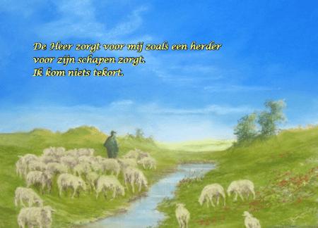 Bijbelse spellen: Spelletjes-kaart: Efratha