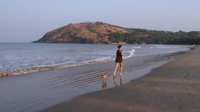 joggen-mit-hund-am-strand