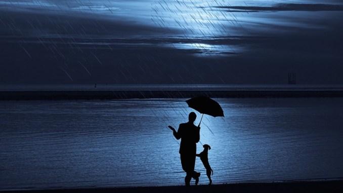 hunde-regenschirm