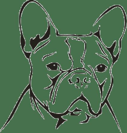 Wandtattoo Franzsische Bulldogge 10  Neuheiten  TierischtolleGeschenke