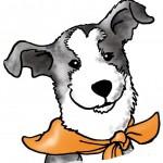 Welcher Typ Hund ist dein Hund (Alle vier Typen) (3/4)