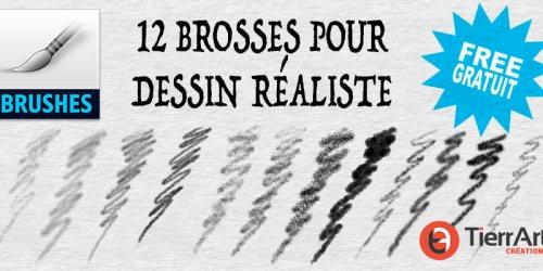 12 brosses pour dessin réaliste