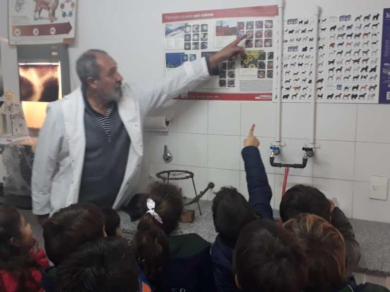 Colegio Tierra del Sur Pinamar - Nivel Primario