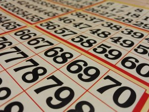 Bingo Nivel Primario