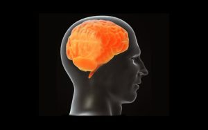Tiene su hijo un coeficiente intelectual normal?