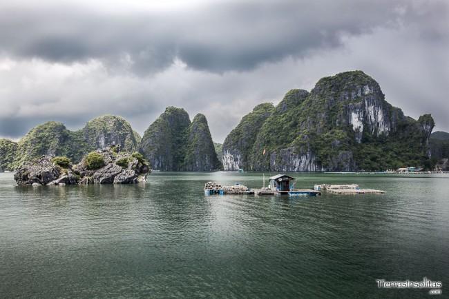 bahia bai tu long vietnam