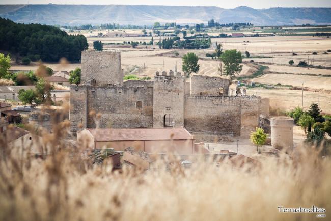 castillo trigueros del valle